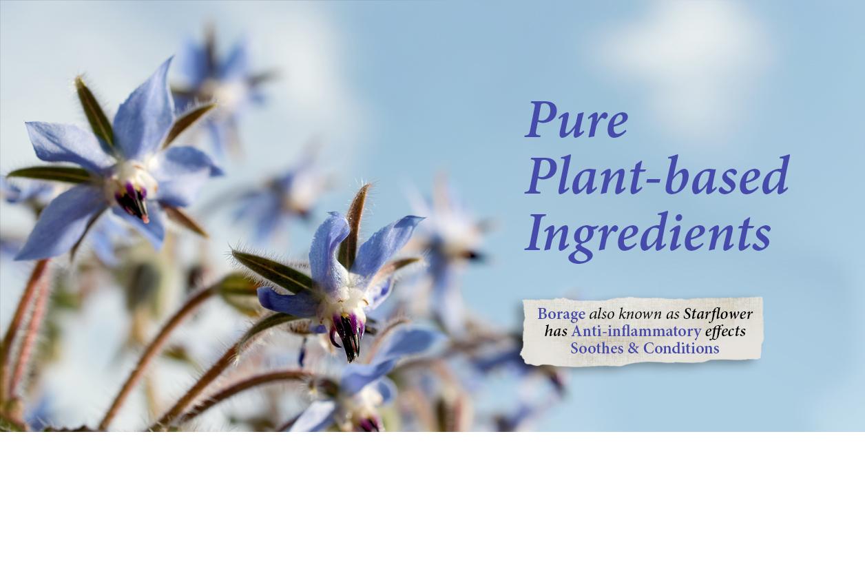 pure plant based ingredients 1 flowers